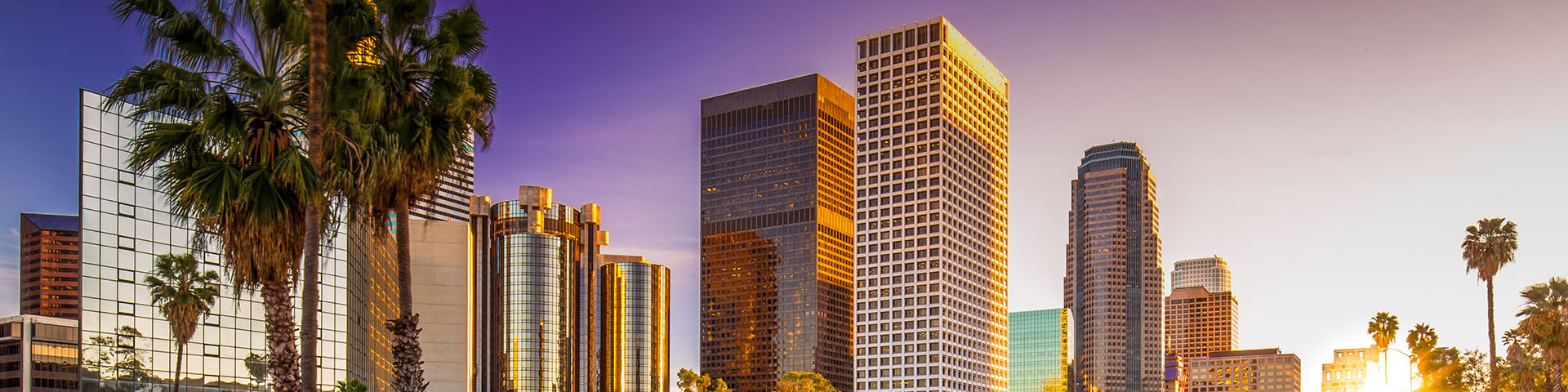 NASIS Commercial Real Estate Investments DTLA